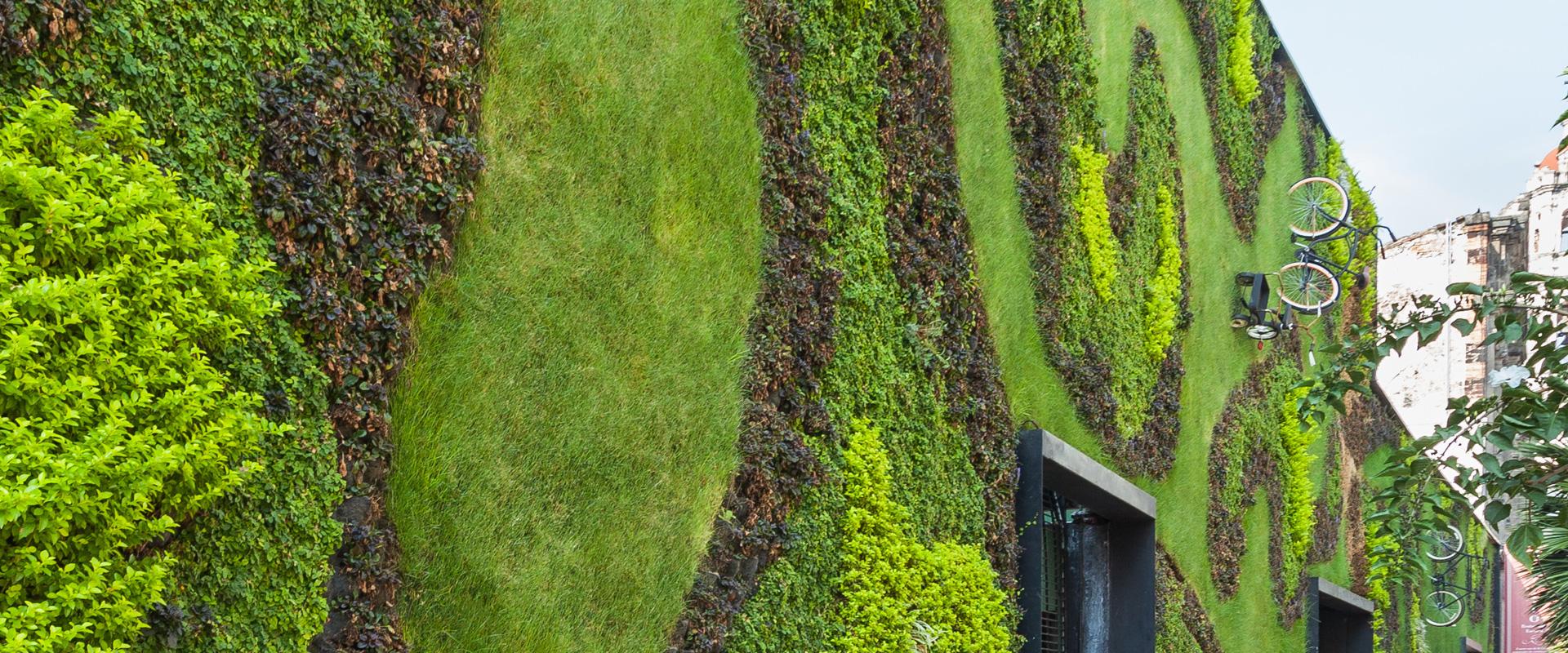 Un giardino verticale migliora la qualità della vita! Ecco i perché: - Vivai ...